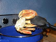 cooked-crab-legs