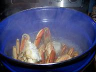 how-to-boil-crab
