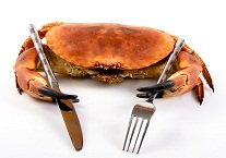 dungeness-crab