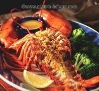 crab-stuffed-lobster